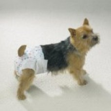 Clean Go Pet Disposable Doggie Diaper, Medium